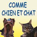 Comme Chien et Chat Lunel Toilettage canin et félin dans le centre commercial les Portes de la Mer