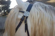 Aficion Clip Codognan vend des bijoux camarguais comme des bijoux pour cheval de Camargue avec signe de la manade (® aficion clip)