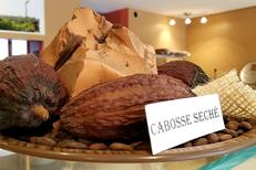 Cacaoterie Marius Nîmes est un chocolatier en centre-ville ( ® SAAM D Gontier)