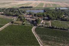 Domaine du Petit Chaumont Aigues Mortes produit des vins de sable bio rouge, rosé et blanc (® networld-fabirce Chort)