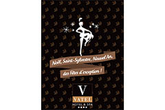 Vatel Nîmes propose une brochure sur les Fêtes de fin d'année au niveau des deux restaurants, de l'hôtel et des chèques-cadeaux Bien être à offrir au Spa Vatel.