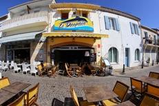 Le Dauphin Grau du Roi est un restaurant de poissons sur les quais (® networld-fabrice Chort)