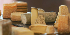 Fromages Nîmes (® networld-fabrice chort)